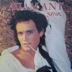 Adam Ant ‎– Strip