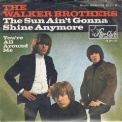 Walker Brothers ‎– The Sun Ain't Gonna Shine Any More 7""