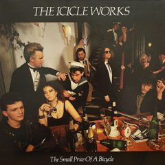 Icicle Works - The Small Price Of A Bicycle