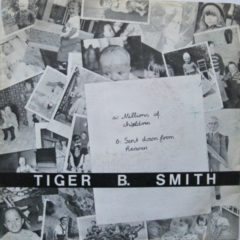 Tiger B. Smith - Millions Of Children / Sent Down From Heaven 7""