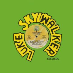 Luke Skyywalker ‎– Skyywalker's Bass Waves Mega Mixes
