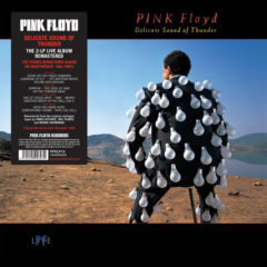 Pink Floyd ‎– Delicate Sound Of Thunder