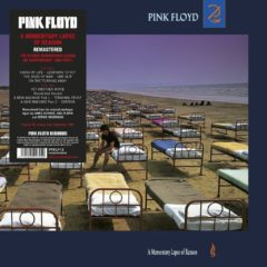 Pink Floyd ‎– A Momentary Lapse Of Reason