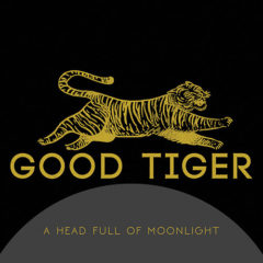 Good Tiger ‎– A Head Full Of Moonlight ( 180g )