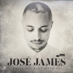 José James ‎– While You Were Sleeping ( 2 LP )