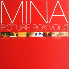 Mina ‎– Picture Box Vol. 3 ( 10 LP, Box Set, Picture Vinyl )