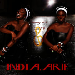 India.Arie ‎– Testimony: Vol. 2, Love & Politics ( 2 LP )