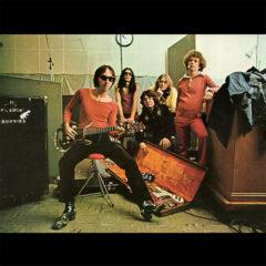 Flamin' Groovies ‎– Teenage Head