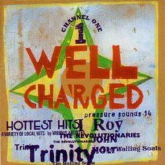 Various Artists - Well Charged / Various