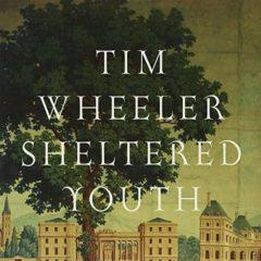 Tim Wheeler - Sheltered Youth  Extended Play,