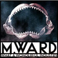 M. Ward - What a Wonderful Industry  Clear Vinyl