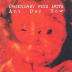 The Legendary Pink Dots - Any Day Now    Expanded Version