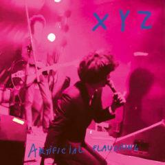 XYZ - Artifical Flavoring