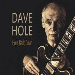 Dave Hole - Goin Back Down