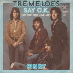 Tremeloes ‎– Say O.K. (Say Ole You Love Me)